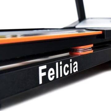 Felicia 6